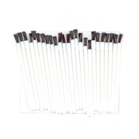 Disposable Lip Brush