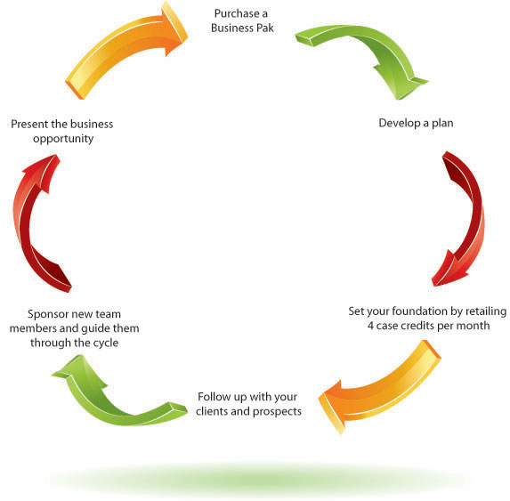 Life Cycle of Success