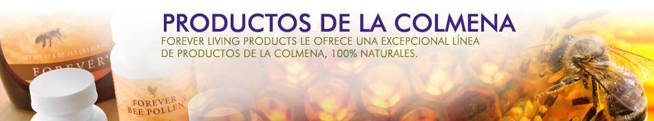 colmenas1 Productos de la colmena