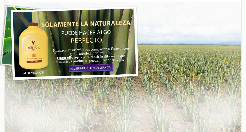 //gallery.foreverliving.com/gallery/FLP/image/Marketing/slide1SpanishNEWEST.jpg
